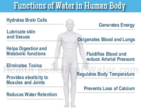 Image result for benefits of drinking water