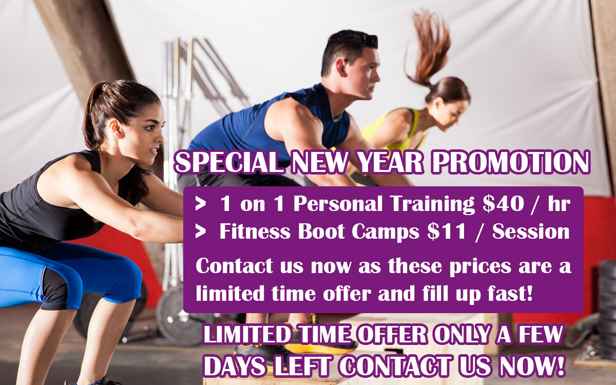 Premium Personal Training new year speacil fitness promotion